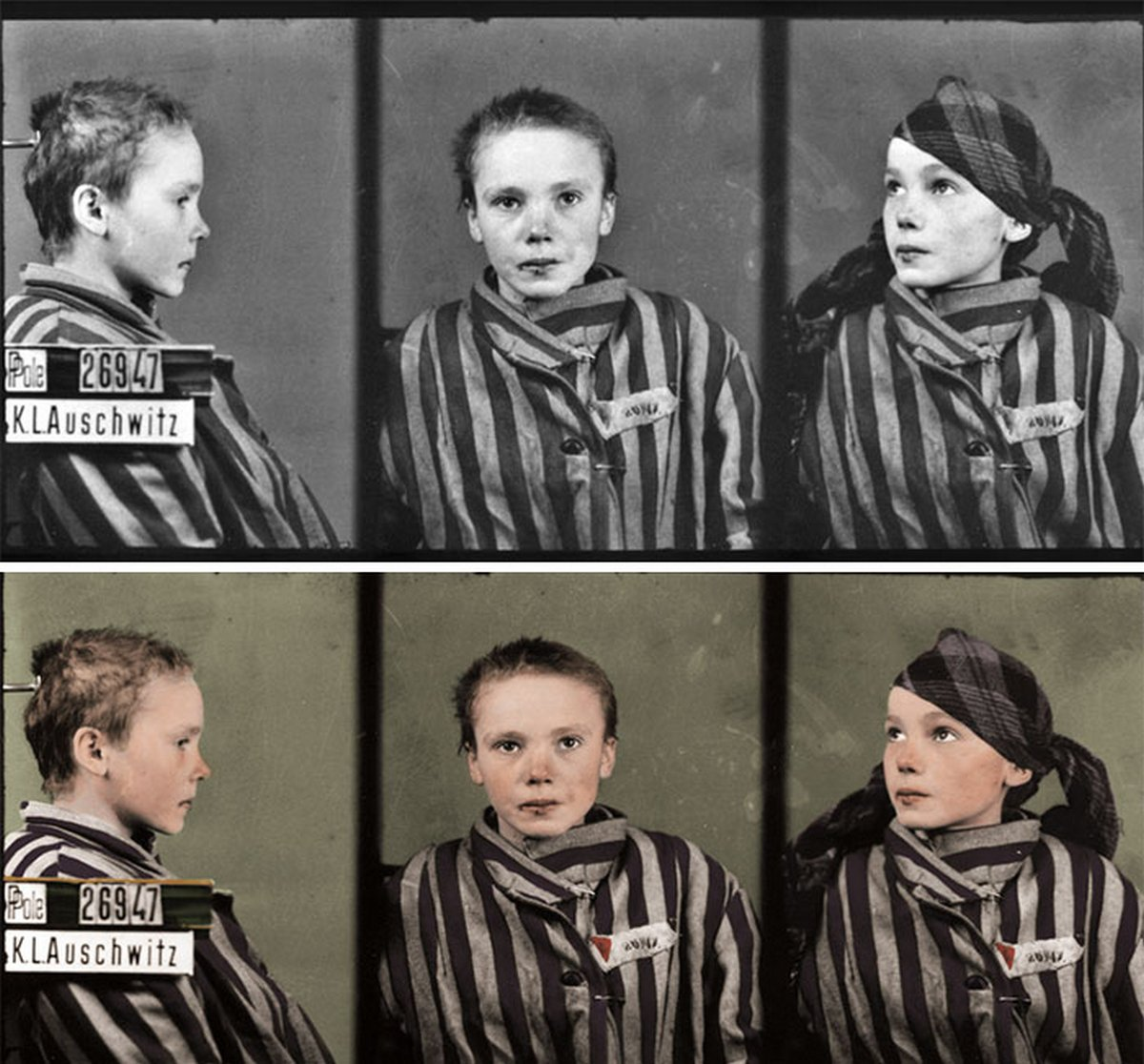 J'ai remarqué que certaines personnes ne savent pas grand-chose de l'Holocauste, alors j'ai colorisé ces clichés